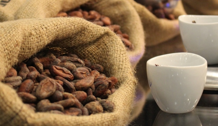 """Interview: Susan Sheen from """"Discover Cacao – a Charity Event"""""""